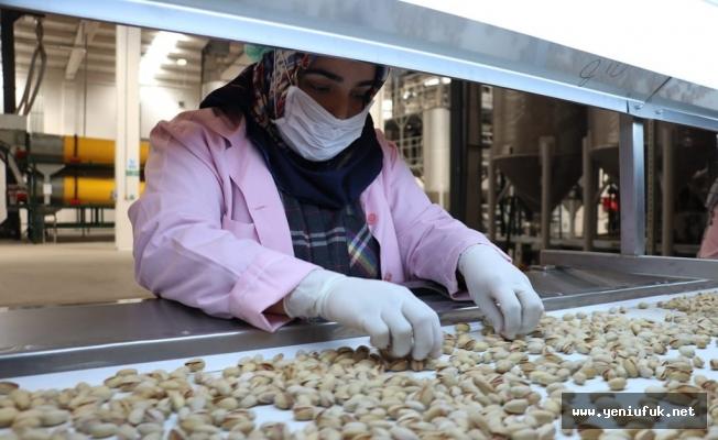 Nitelikli ve Mesleki Yeterlilik Belge Sahibi Kadın Çalışanların Sayısı 50 Bini Aştı