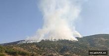 Palu'da Orman Yangını