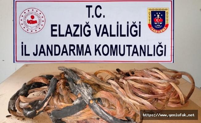Elazığ Palu İlçesinde Kablo Hırsızları Yakalandı