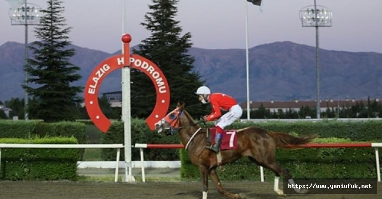 Elazığ At yarışlarında 18. Yarış günü