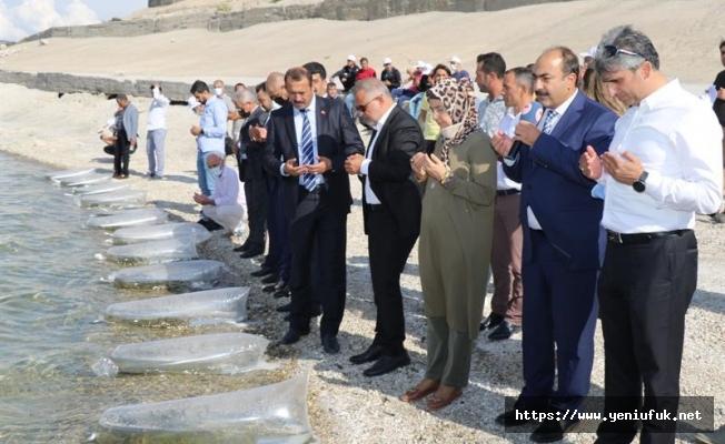 12 Milyon Balık Suya Bırakıldı