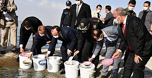 Cumhuriyetin 97. Yılı Anısına Keban Barajına 970.000 Adet Balık Yavrusu Bırakıldı