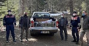 Kaçak avcılar jandarmaya avlandı