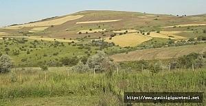 Tarım Arazilerinin Satışı ve Devrinde Ücret Alınmayacak