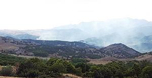 Tuncelide Orman Yangını